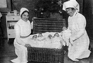 Photo:A hamper of Christmas babies, c.1930.